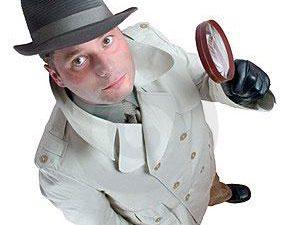 Thiết kế web An ninh, Thám tử, Bảo vệ