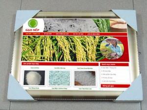 Thiết kế web đặc sản gạo nếp