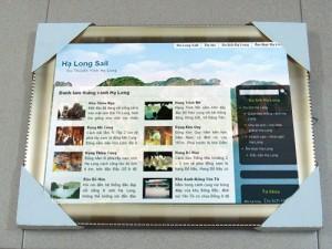 Thiết kế web Hạ Long
