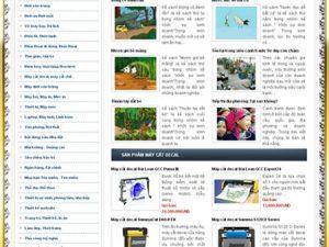 Thiết kế website liên minh quản trị doanh nghiệp